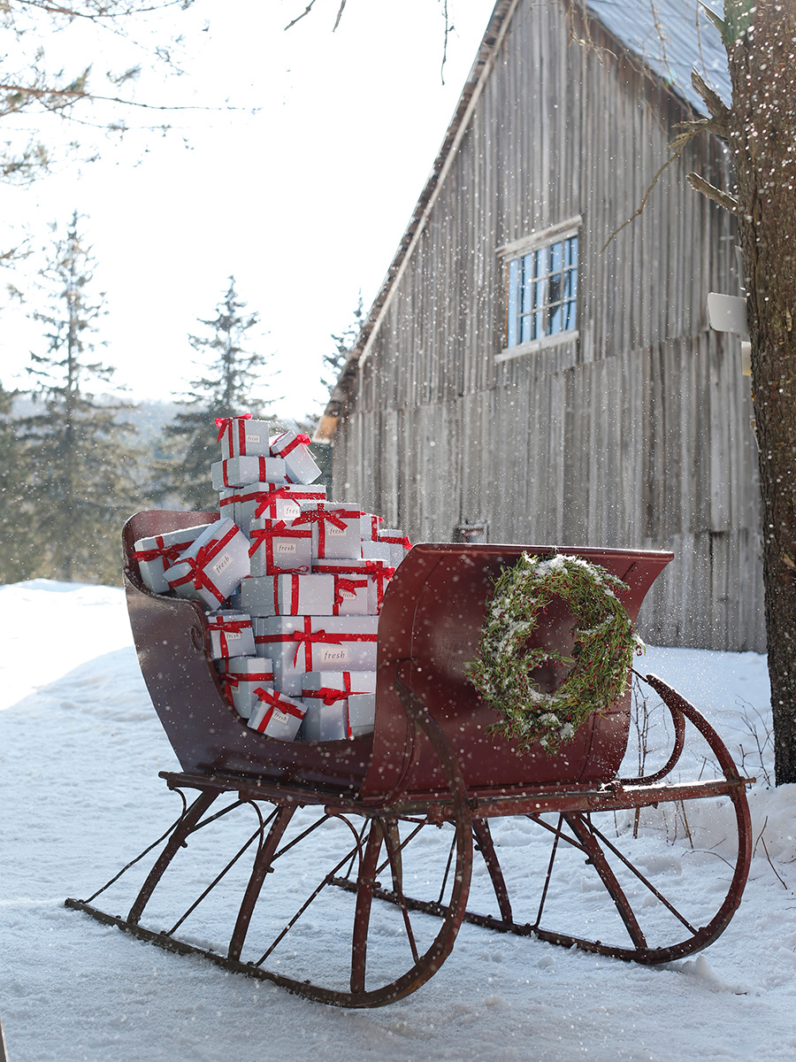Holiday_2016_Gifts_Sled_2690